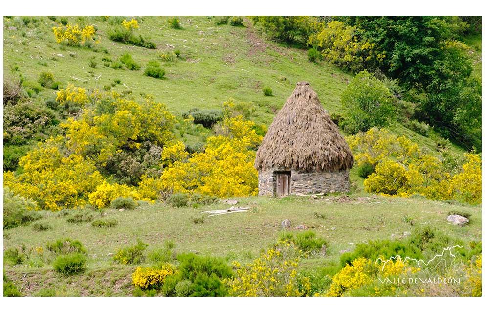 Majadas y pastoreo en los Picos de Europa